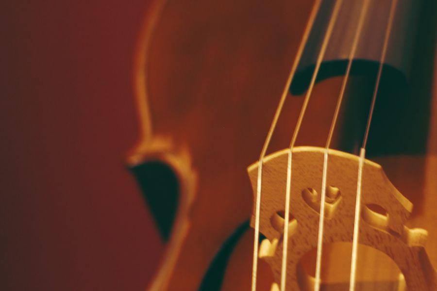 Viola | Private Music Lessons | Asheville Music School