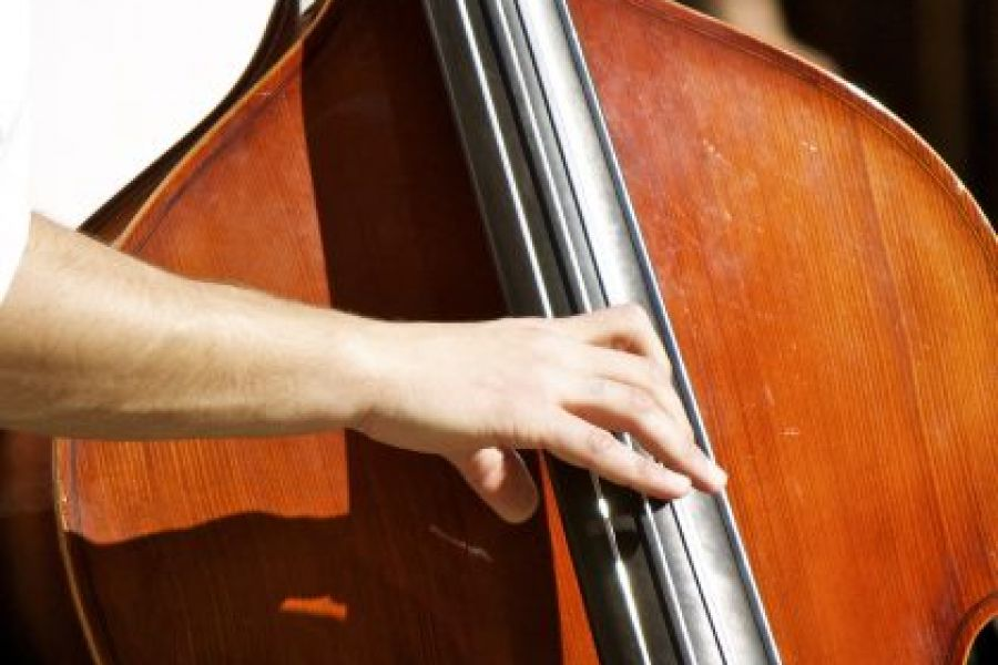 Upright Bass | Private Music Lessons | Asheville Music School